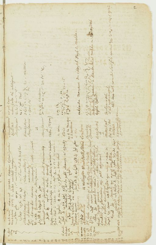 Visuel du media #5 - Folio 2r